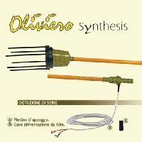 Oliviero Synthesis
